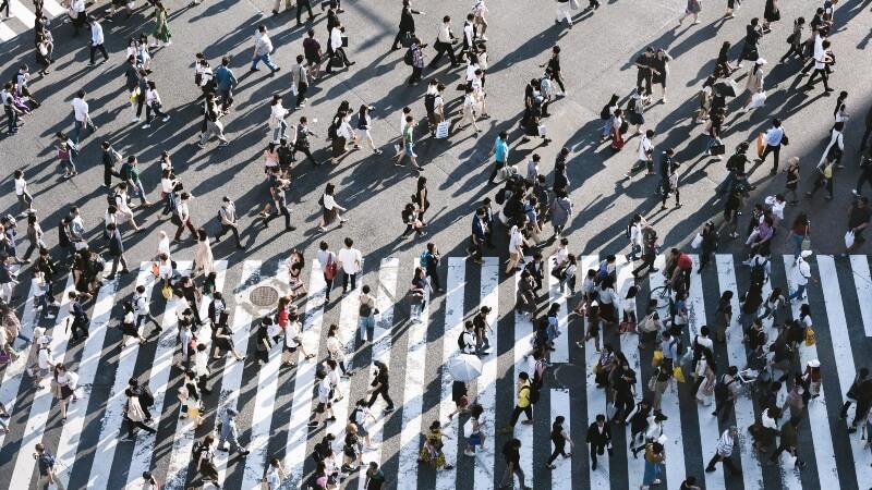 people walking across zebra crossing
